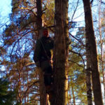 Спил опасного дерева на кладбище в Покрове